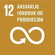 Bærekraft-Ansvarlig forsbruk og produksjon